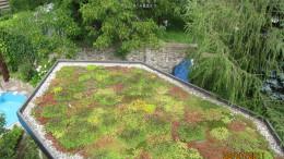 Gründächer – der Garten auf dem Dach